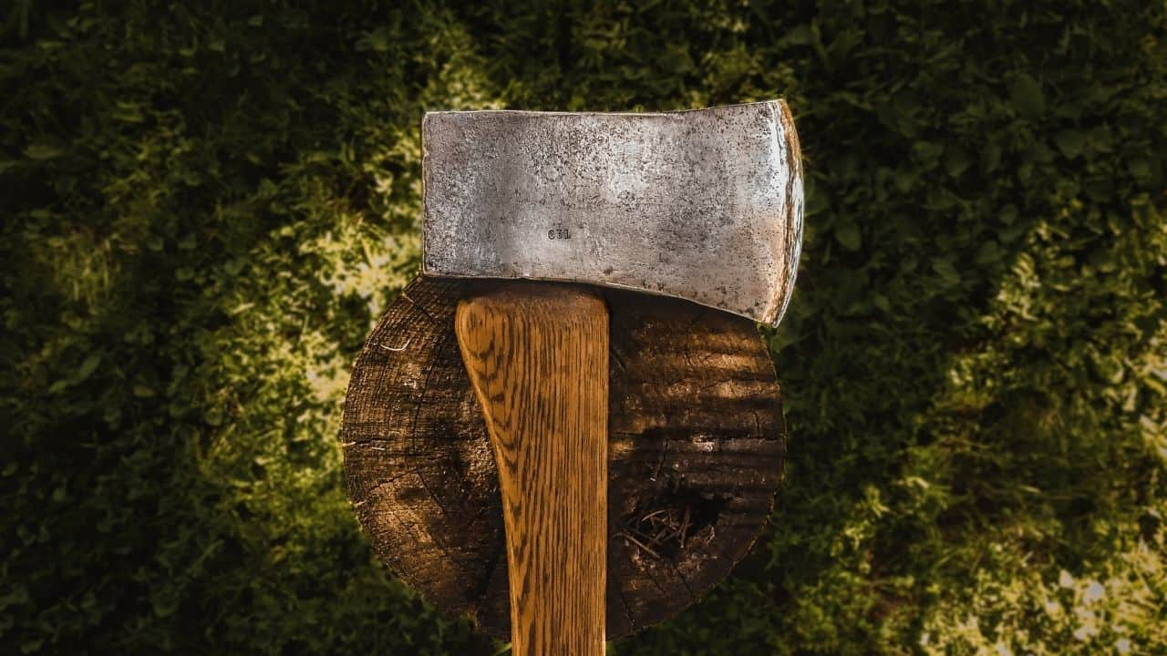 photo of a hatchet blade laying on a stump of wood with green mossy background