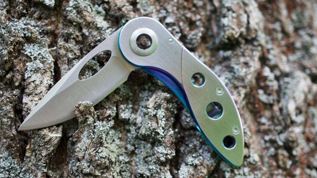 photo of a silver pocket knife half open on a mossy oak tree